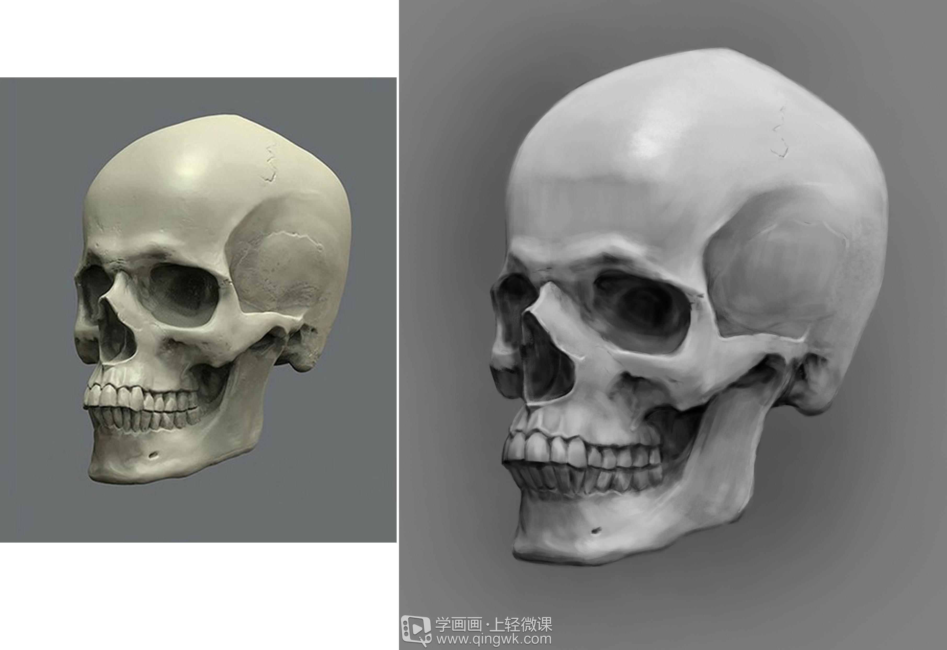 动漫头部画法_学员作业:如何画同人动漫人物之人体头骨素描的画法与训练 ...